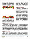 0000073841 Word Templates - Page 4
