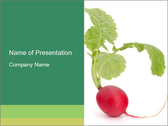 0000073846 PowerPoint Template - Slide 1