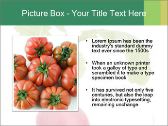 0000073846 PowerPoint Template - Slide 13