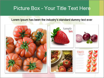 0000073846 PowerPoint Templates - Slide 19