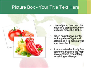 0000073846 PowerPoint Templates - Slide 20