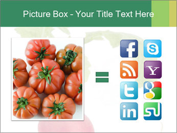 0000073846 PowerPoint Template - Slide 21