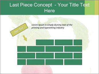 0000073846 PowerPoint Template - Slide 46