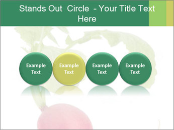 0000073846 PowerPoint Templates - Slide 76
