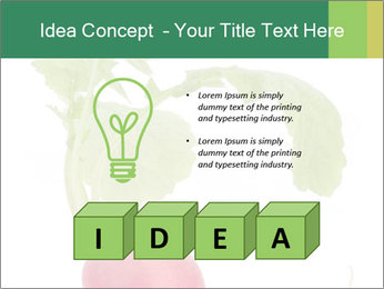 0000073846 PowerPoint Template - Slide 80