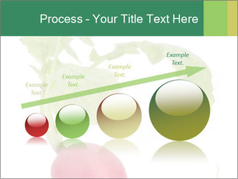 0000073846 PowerPoint Template - Slide 87