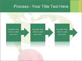0000073846 PowerPoint Template - Slide 88