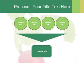 0000073846 PowerPoint Template - Slide 93