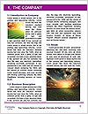 0000073854 Word Template - Page 3