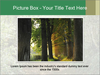 0000073855 PowerPoint Template - Slide 15