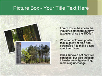 0000073855 PowerPoint Template - Slide 20