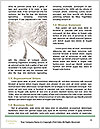 0000073855 Word Templates - Page 4