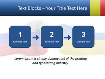 0000073877 PowerPoint Templates - Slide 71