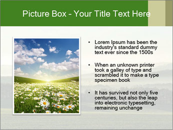 0000073881 PowerPoint Templates - Slide 13