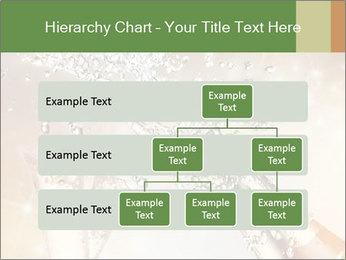 0000073882 PowerPoint Template - Slide 67