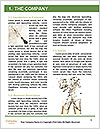 0000073882 Word Template - Page 3