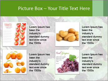 0000073886 PowerPoint Templates - Slide 14