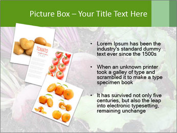 0000073886 PowerPoint Templates - Slide 17