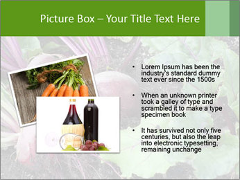 0000073886 PowerPoint Templates - Slide 20