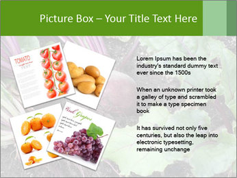 0000073886 PowerPoint Templates - Slide 23