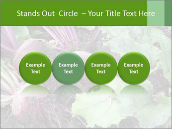 0000073886 PowerPoint Templates - Slide 76