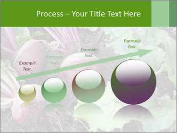 0000073886 PowerPoint Templates - Slide 87
