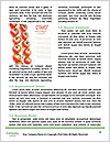 0000073886 Word Template - Page 4