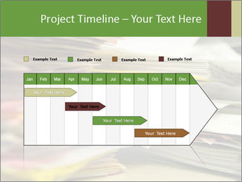 0000073889 PowerPoint Template - Slide 25