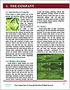 0000073891 Word Templates - Page 3