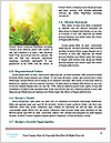 0000073891 Word Templates - Page 4