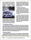 0000073896 Word Template - Page 4