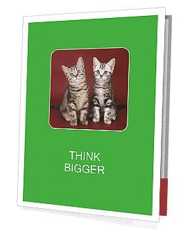 0000073900 Presentation Folder