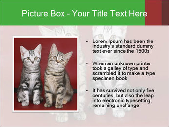 0000073900 PowerPoint Templates - Slide 13