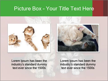 0000073900 PowerPoint Templates - Slide 18