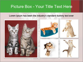0000073900 PowerPoint Templates - Slide 19