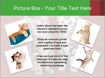 0000073900 PowerPoint Templates - Slide 24
