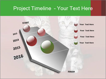 0000073900 PowerPoint Templates - Slide 26