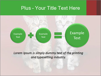 0000073900 PowerPoint Templates - Slide 75