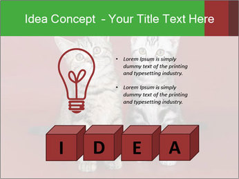 0000073900 PowerPoint Templates - Slide 80