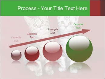 0000073900 PowerPoint Templates - Slide 87