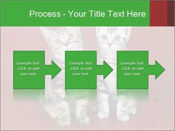 0000073900 PowerPoint Templates - Slide 88