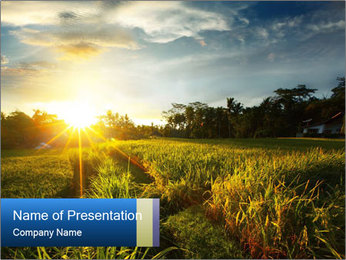 0000073905 PowerPoint Template - Slide 1