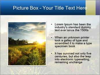 0000073905 PowerPoint Template - Slide 13