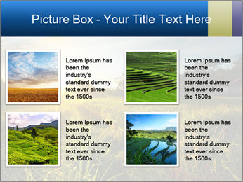 0000073905 PowerPoint Template - Slide 14