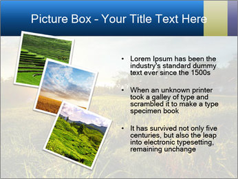0000073905 PowerPoint Template - Slide 17