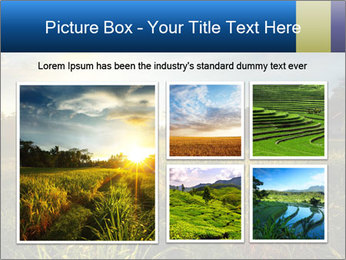 0000073905 PowerPoint Template - Slide 19