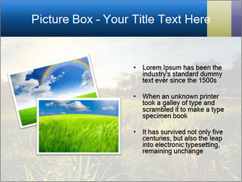 0000073905 PowerPoint Template - Slide 20