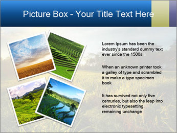 0000073905 PowerPoint Template - Slide 23