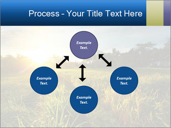 0000073905 PowerPoint Template - Slide 91