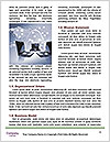 0000073911 Word Templates - Page 4